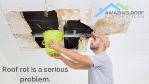 Common Reasons Why Your Newcastle Roofing is Rotting