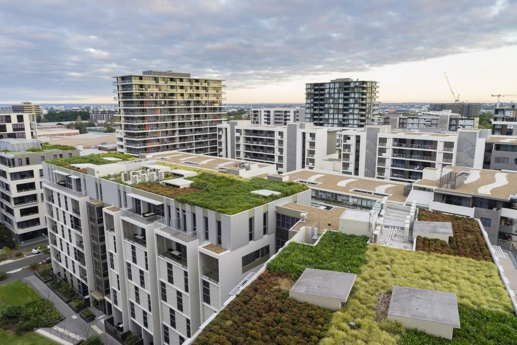 Green Roof Technology – Amazing or Useless? -