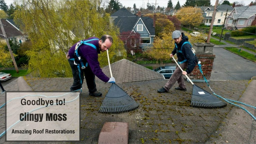 Goodbye, Clingy Moss: How to Remove Moss from Your Roof