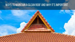 Ways to Maintain a Clean Roof and Why it's Important