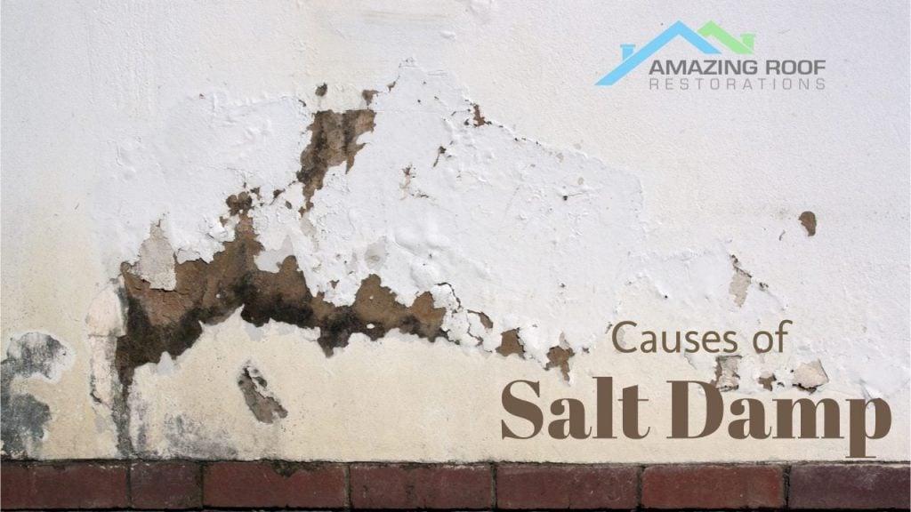 Salt - Good on Food but Not On Walls -
