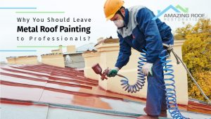 Why You Should Leave Metal Roof Painting to Professionals?