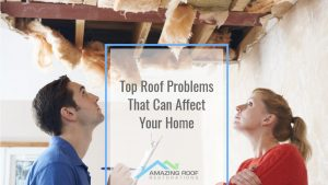 All Ears, Homeowners: Top Roof Problems That Can Affect Your Home