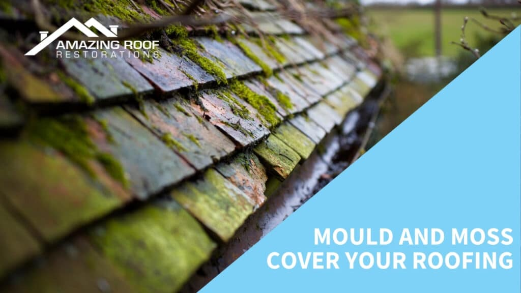 Mould and moss cover your roofing