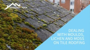 Dealing with Moulds, Lichen and Moss on Tile Roofing